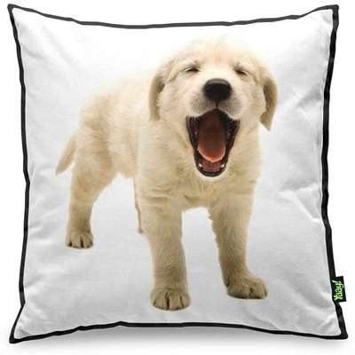 Almofada Yaay Love Dogs Black Edition - Golden Retriever